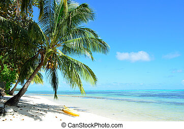 Kayak on a tropical white beach - Watersport kayak under a...