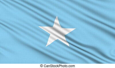 Somali flag. - Somali flag, with real structure of a fabric