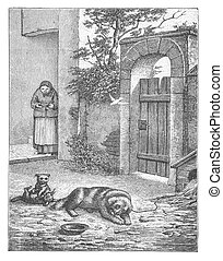 Old woman feed the dog
