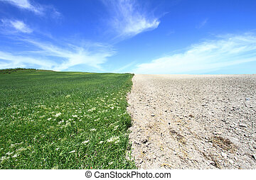 Agriculture field with cloudscape