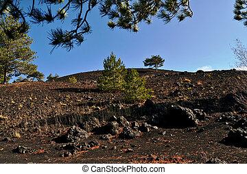 Etna, Sicilys active volcano