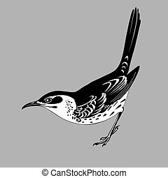 thrush silhouette on gray  background