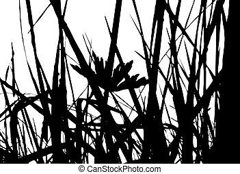herb silhouette on white background