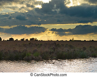 Cloudy sky during sunset - Brooding sky above natural...