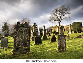 Cemetery with tombstones and a tree in the background -...