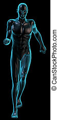 Human body running on black - 3D rendering of Human body...