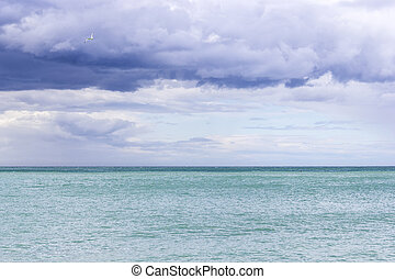 Beautiful azure sea and a gull in the cloudy blue sky -...
