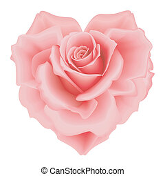 Rose heart - Isolated beautiful pink rose-heart on the white...