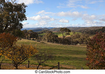Autumn colours in countryside tablelands near Oberon NSW...