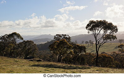 Autumn in countryside tablelands near Oberon. NSW....