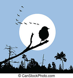 bird on branch silhouette on solar background, vector...