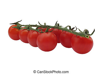 Fresh cherry tomato sprig isolated - Fresh picked cherry...