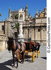 Horse drawn carriage, Seville. - Horse drawn carriage...
