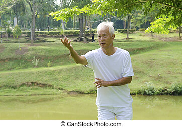 asian man - asian senior man on tai chi with outdoor