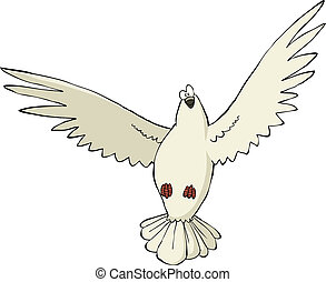 Pigeon on a white background vector illustration