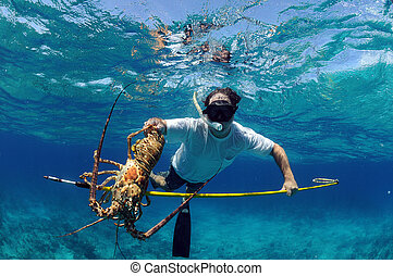 Spearfishing for lobster - Underwater image of man catching...