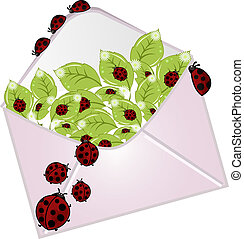 The letter with a ladybugs - The letter with a flowers and...