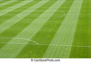 Soccer Field Grass - Detail of Soccer Field Grass in a...