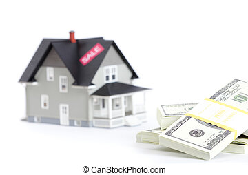 Bundles of dollars in front of household architectural model, isolated