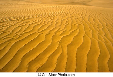 Sand Dune - Orange Texture ripples on a desert sand dune