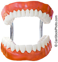 Denture Model Cutout - Plastic Denture Model Isolated with...