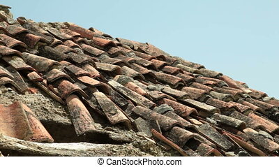 Old Roof Tiles, Pan Shot