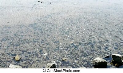 clear and transparent Repulse Bay - clear transparent...
