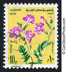 Flowers - EGYPT - CIRCA 1972: stamp printed by Egypt, shows...