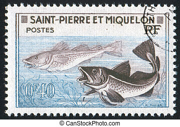 Codfish - SAINT PIERRE AND MIQUELON - CIRCA 1957: stamp...
