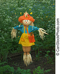 Scarecrow on a vegetable patch
