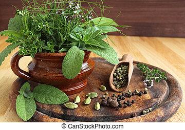 hierbas, especias