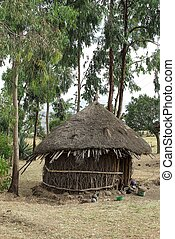 Hut in Ethiopia