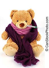 teddy, oso, termómetro