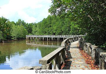Concrete bridge go to mangrove forest - Concrete bridge go...