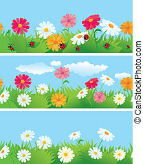 3 seamless borders with ox-eye daisy flowers and ladybirds