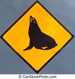 Attention Seals or Sealions on Road Sign - New Zealand Road...