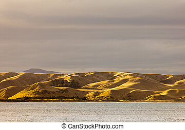 Coastal grassland dry and yellow from drought, NZ