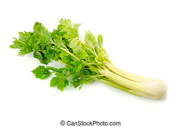 celery - Cooking ingredient series celery. for adv etc. of...