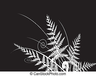 beauty fern dark background