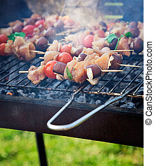 Spring barbecue: Chicken and vegetables barbecue in the...