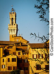Torre del Mangia, Siena - The top of the famous Torre del...