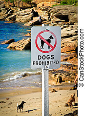 Dogs prohibited - Dogs playing on the beach with their owner...
