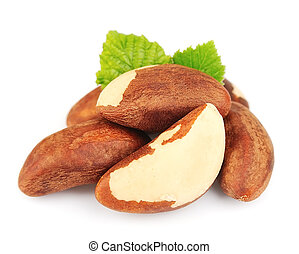 Bertholletia.Brazil nuts with leafs on white close up