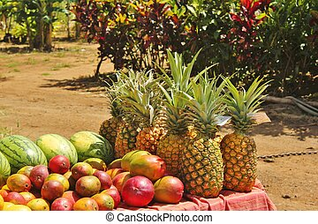 Fruits in the tropics