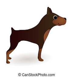 Little funny brown dog