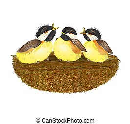 Bird Nest - Illustration of a bird nest, on a white...