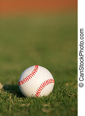 Baseball on the Field captured with shallow depth of field
