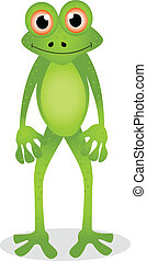 frog cartoon - vector illustration of frog cartoon