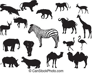 African animal collection - A vector of african animal...
