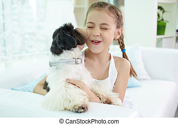 Play with dog - Portrait of happy girl playing with shih-tzu...